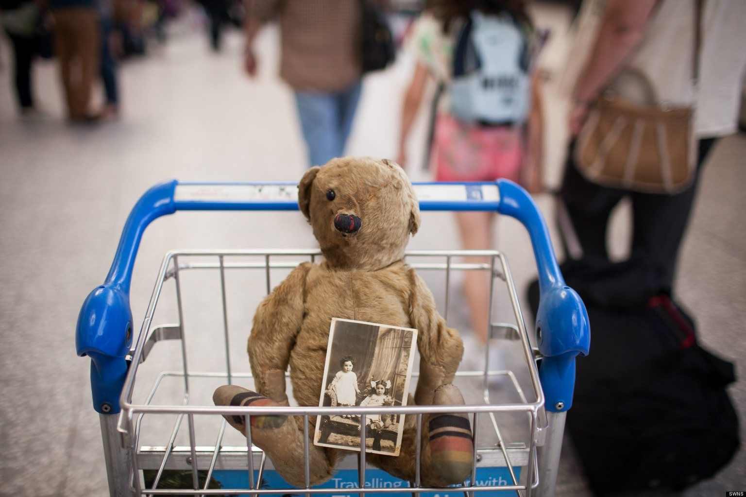 Do you know this bear help us reunite a muchloved 100