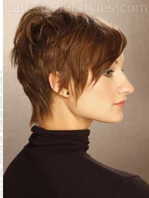 Short Hairstyle The Played Up Pixie Wispy Style Side View For Ointments At Company Salon