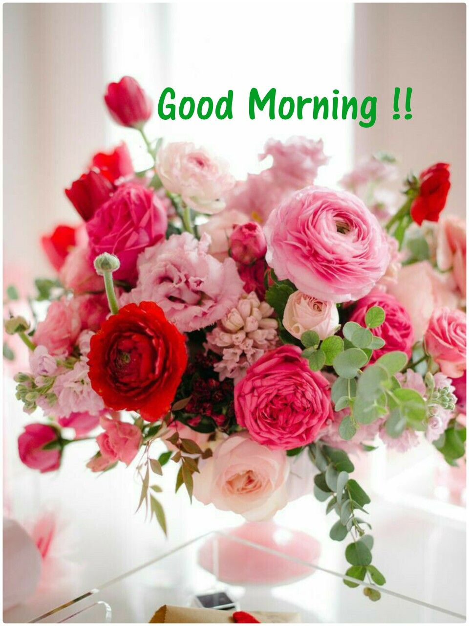Good Morning....Have a beautiful day everyone