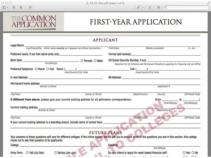 Commoncollegeapplicationformsample essay format