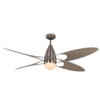 View The Monte Carlo Butterfly 4 Bladed 54 Indoor Outdoor Ceiling Fan Light Kit And Remote Included At Build Co Ceiling Fan Ceiling Fan With Light Fan Light