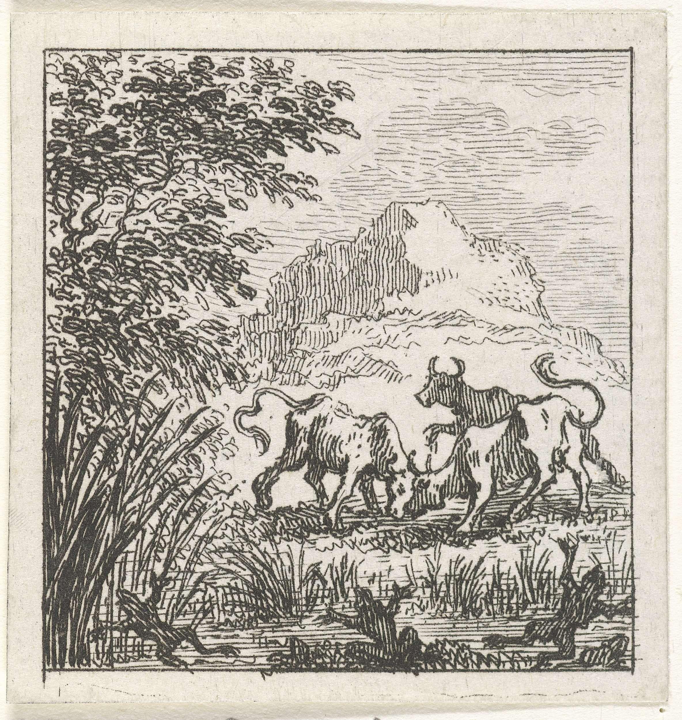 Simon Fokke | Fabel van de stieren in gevecht, Simon Fokke, 1769 | Drie stieren zijn in een weide in gevecht. Deze illustratie is vervaardigd bij de Aesopische fabels van de Latijnse dichter Phaedrus.