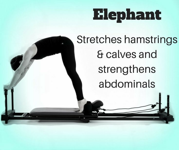 Pilates Reformer Elephant Studio Workouts -  Pilates Reformer Elephant Studio Workouts, #elephant #Pilates #Reformer #Studio #Workouts  - #elephant #Exercise #meditation #pilates #reformer #studio #StudioWorkouts #workouts #YogaPoses