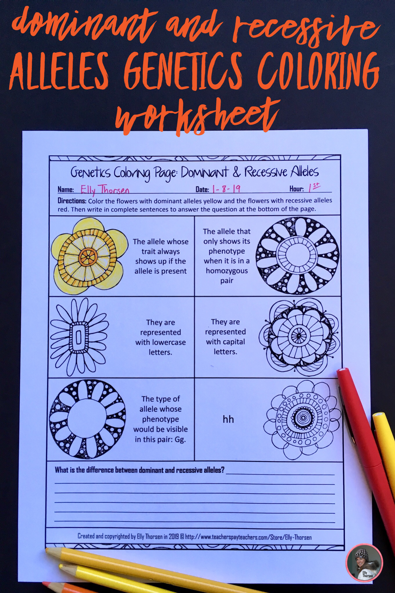 Dominant And Recessive Alleles Genetics Coloring Worksheet