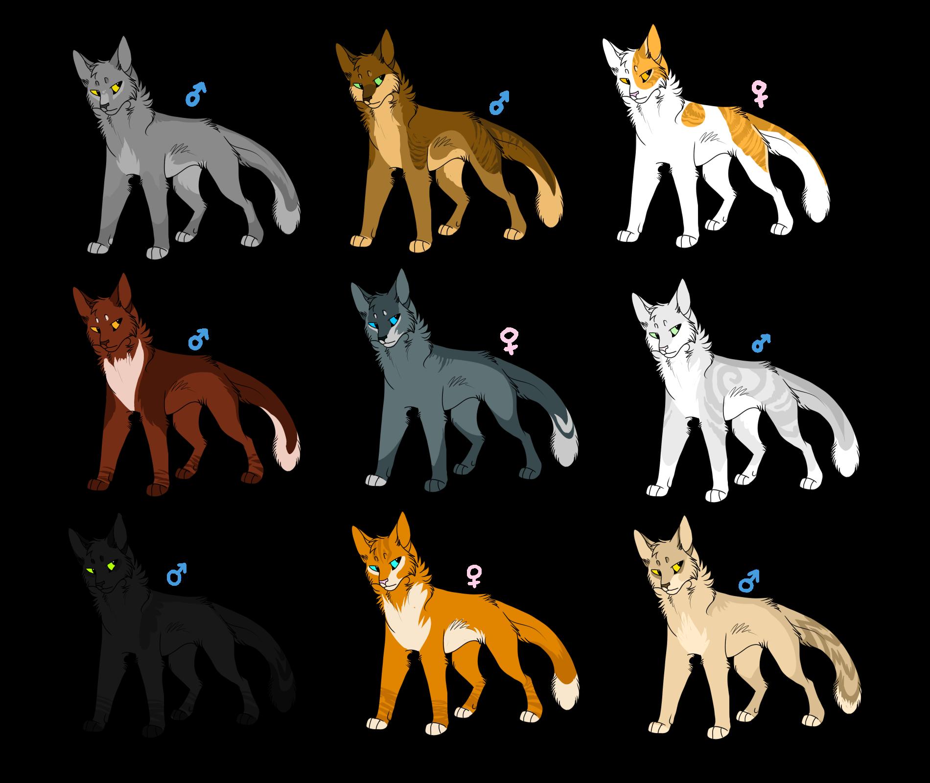 современные имена воителей коты воители можете