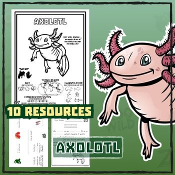 Axolotl 10 Resources Coloring Pages Reading Activities
