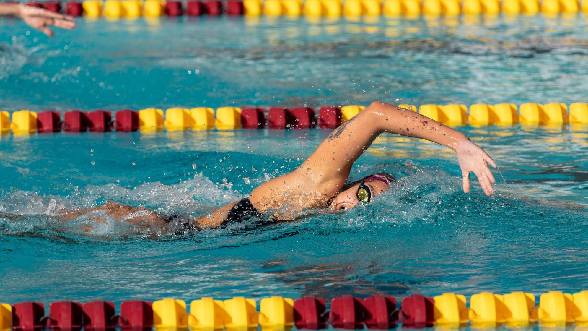 Asu Entire Men S Women S Swimming Teams To Redshirt In 2020 21 In 2020 Womens Swim Swimming Olympic Trials