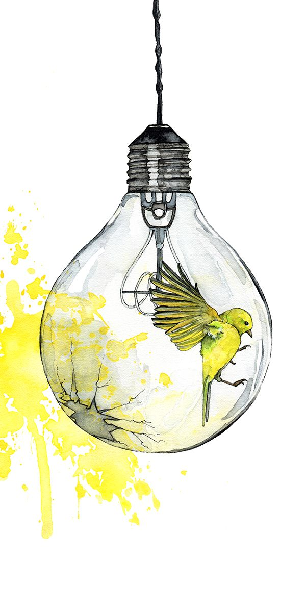 Watercolor Painting Light Bulb Painting Watercolor Print Bird