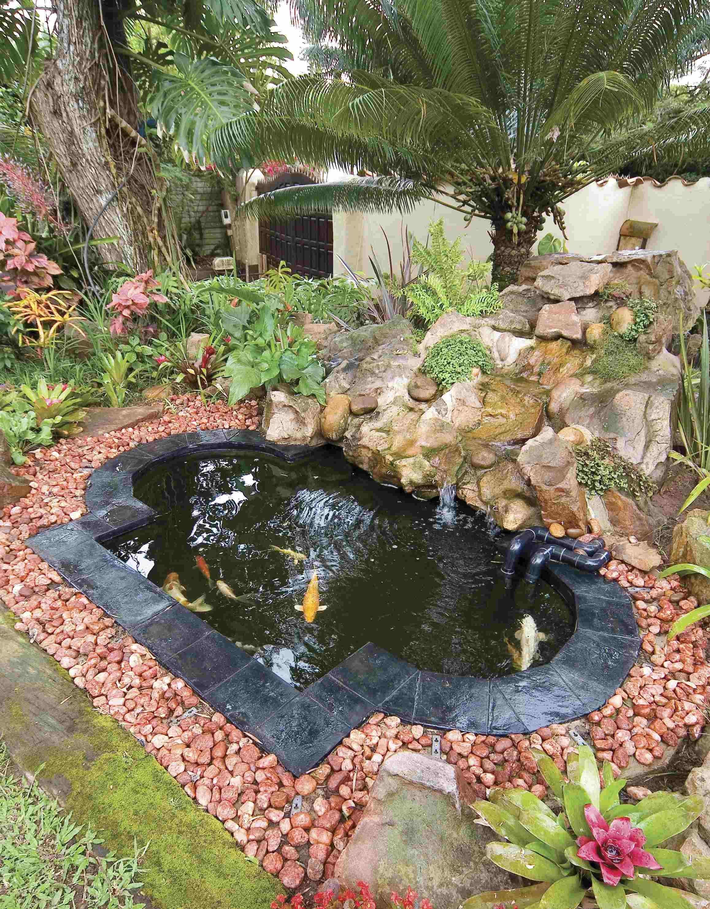 Small Koi Pond in backyard garden. Pond Pondsealant http