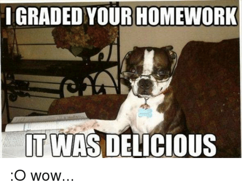 Image result for french bulldog meme no homework Funny