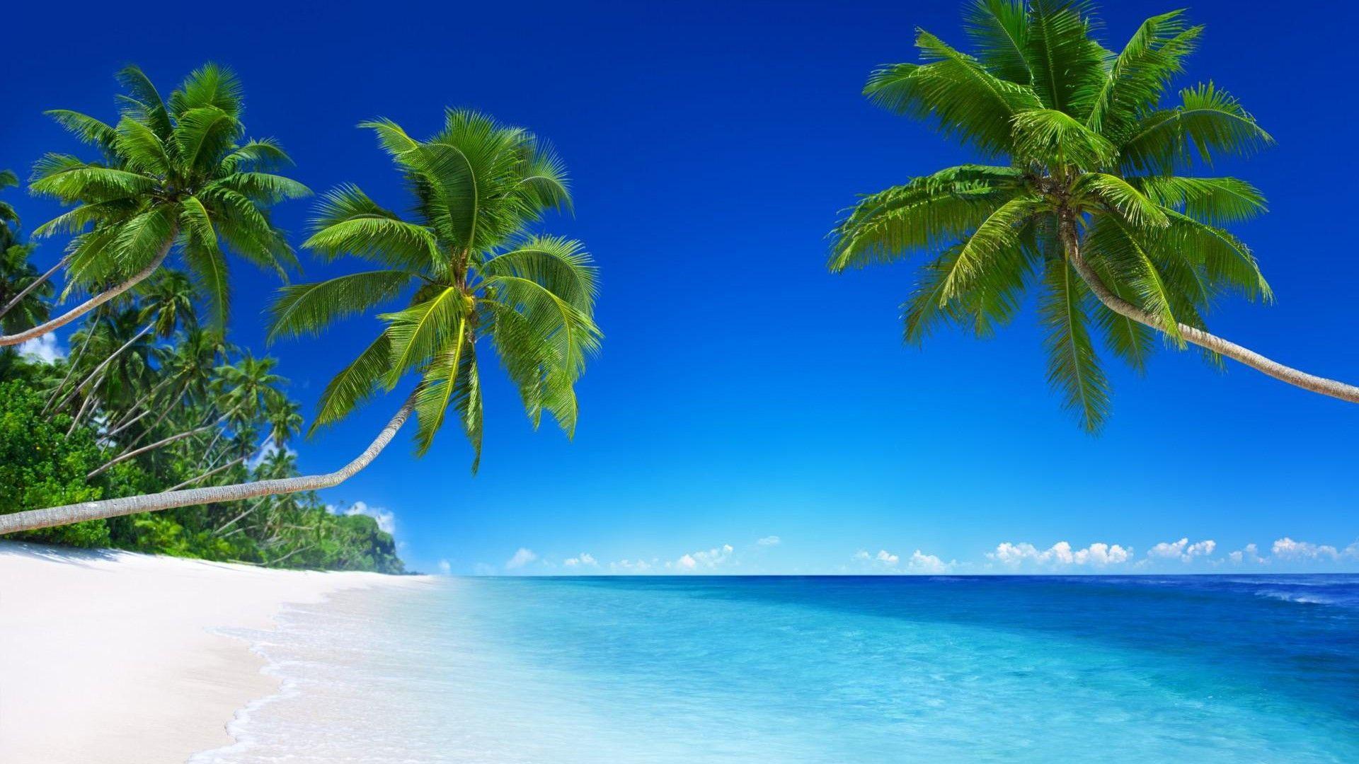 Wallpaper Pemandangan Pantai Hd Di 2020 Dengan Gambar Pantai