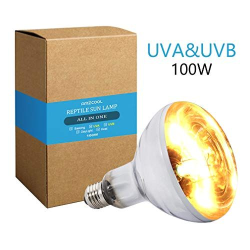Top 15 Best Uvb Lights For Bearded Dragons Reviews Guide 2020
