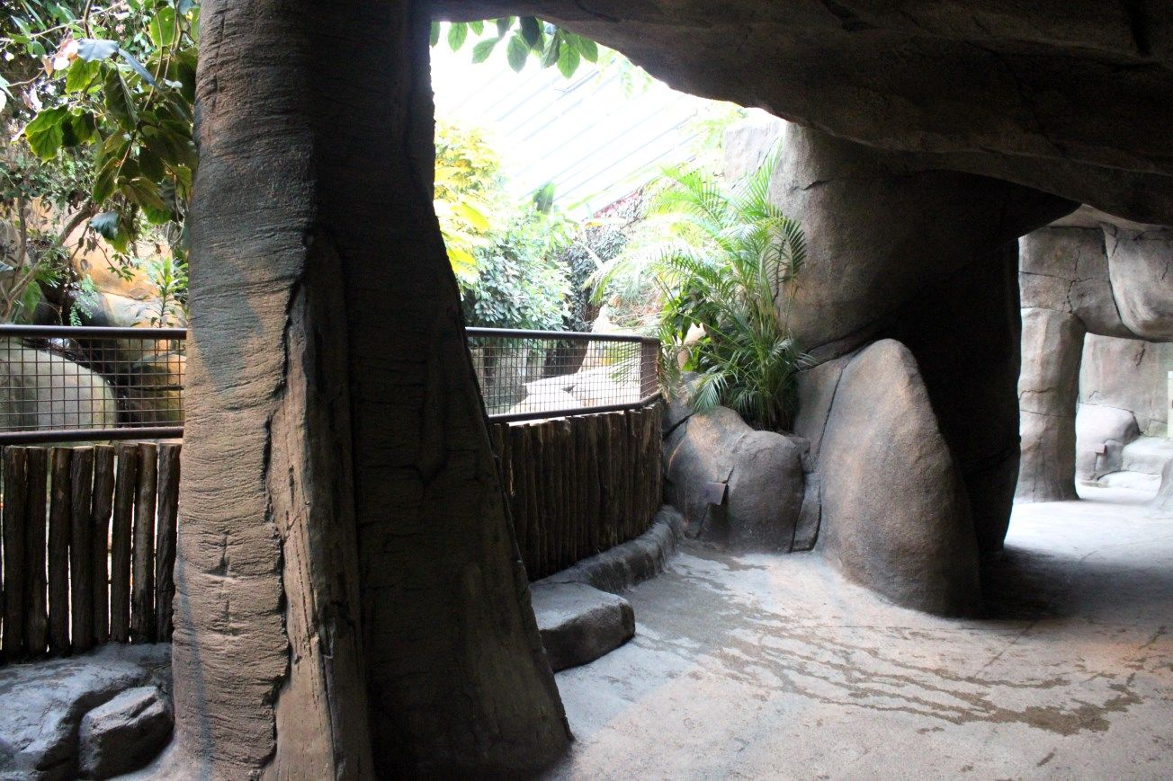 Aalborg Zoo - African Village (Tropical House) | ZooChat | Zoos