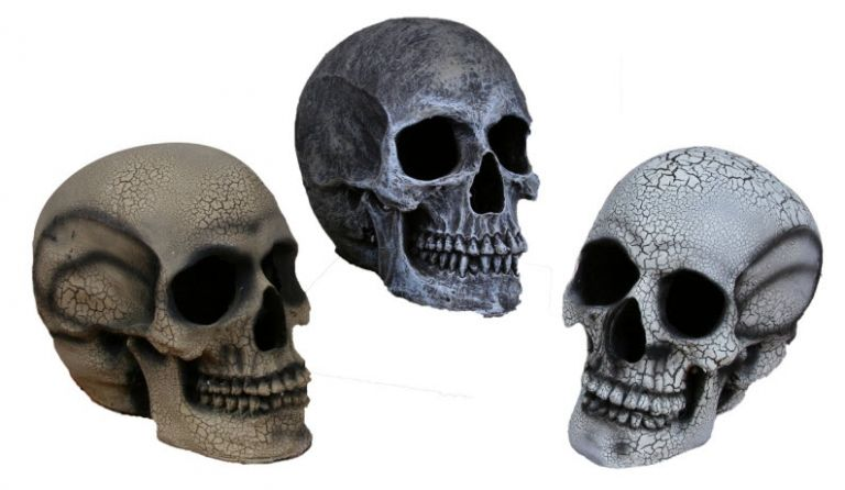 Skull with Strobe - Decorations  Props - Halloween Express