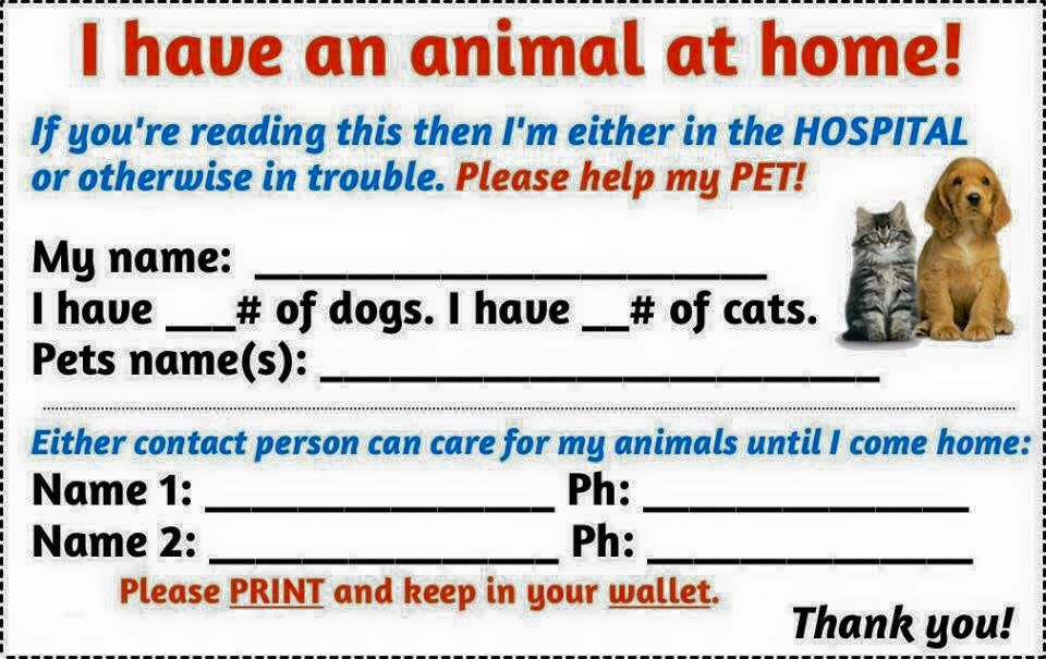 Pin By Janeal Murchison On My Kid Has Four Paws Pet Care Pets Animals For Kids