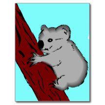 Koala bear 4 postcard