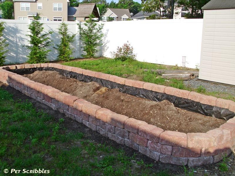 How To Build A Raised Garden Bed For Vegetables Building Raised