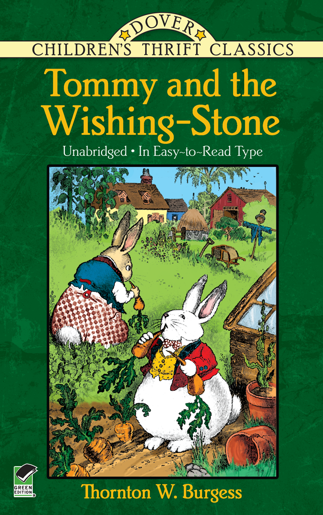 Tommy And The Wishing Stone Wishing Stones Childrens Children S Literature