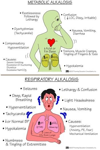 symptoms of metabolic and respiratory alkalosis | nursing, Skeleton