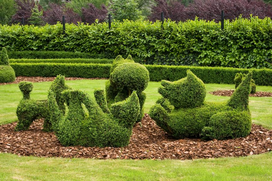 Marvelous Topiary Ideas Part - 7: Topiary Garden Of Dogs Playing