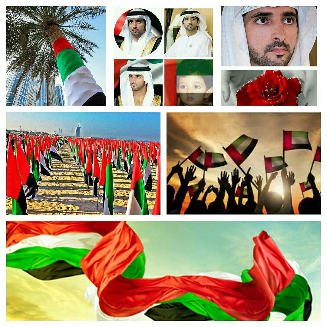 Pin by Vicky Butron on Crown Prince Of Dubai Happy Day