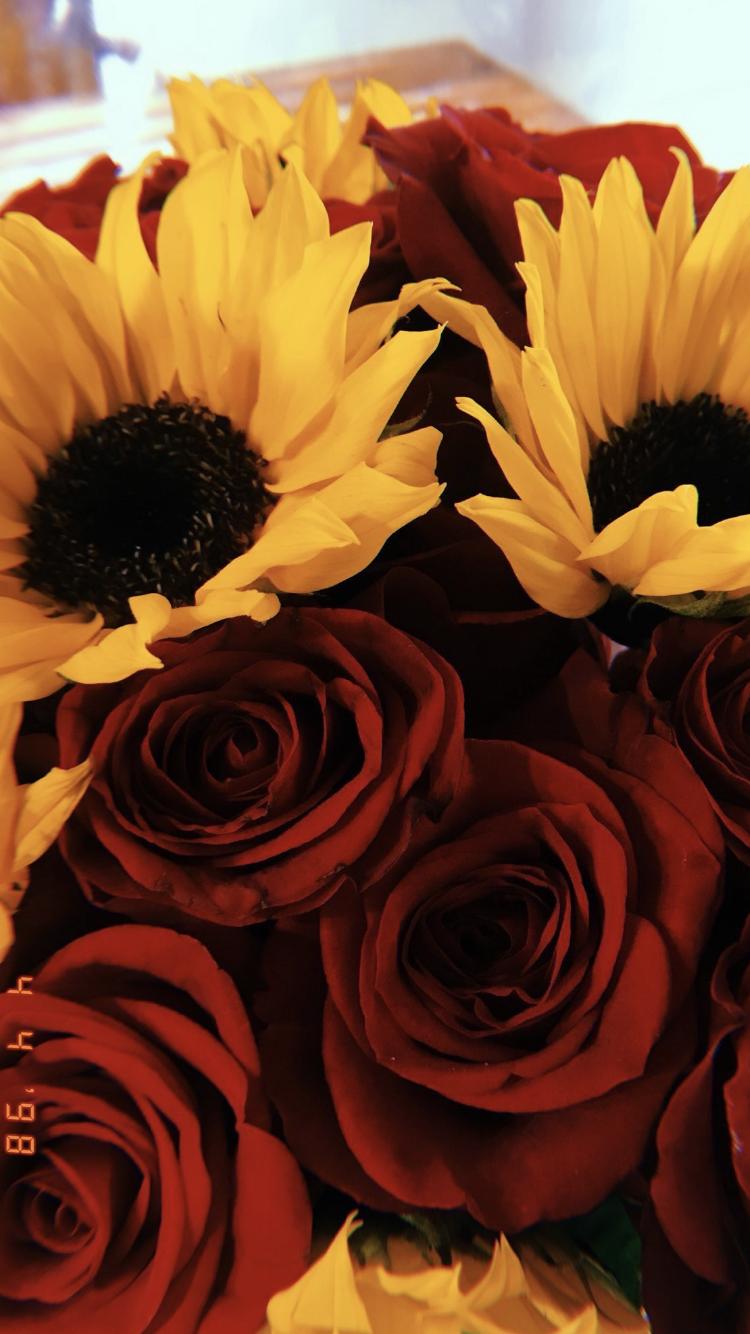 Vsco Dejiasolomon Sunflowers And Roses Sunflower Wallpaper