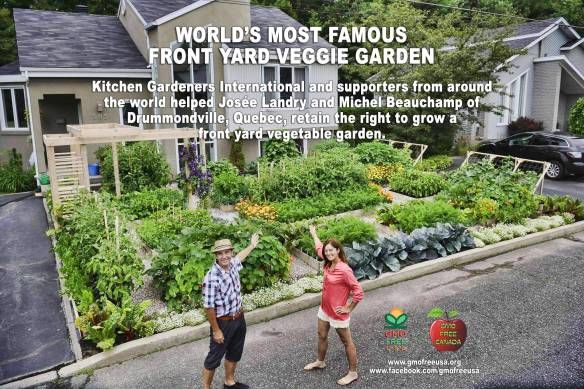 World S Most Famous Front Yard Vegetable Garden Fall Garden Vegetables Front Yard Garden Design Front Yard Garden