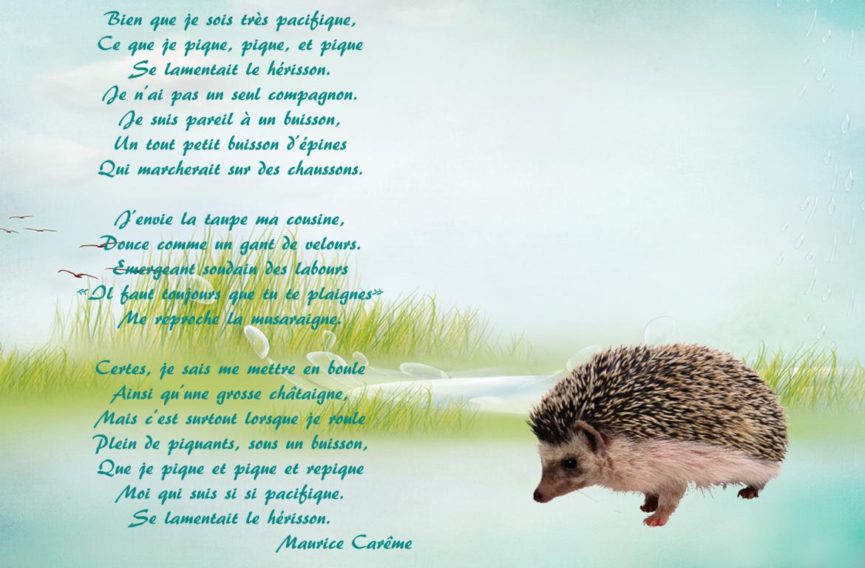 Maurice Carême Poésie Le Hérisson Maurice Carême Les