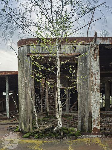 Tschernobyl Chernobyl 30er Jahre Sandkasten Und Baum