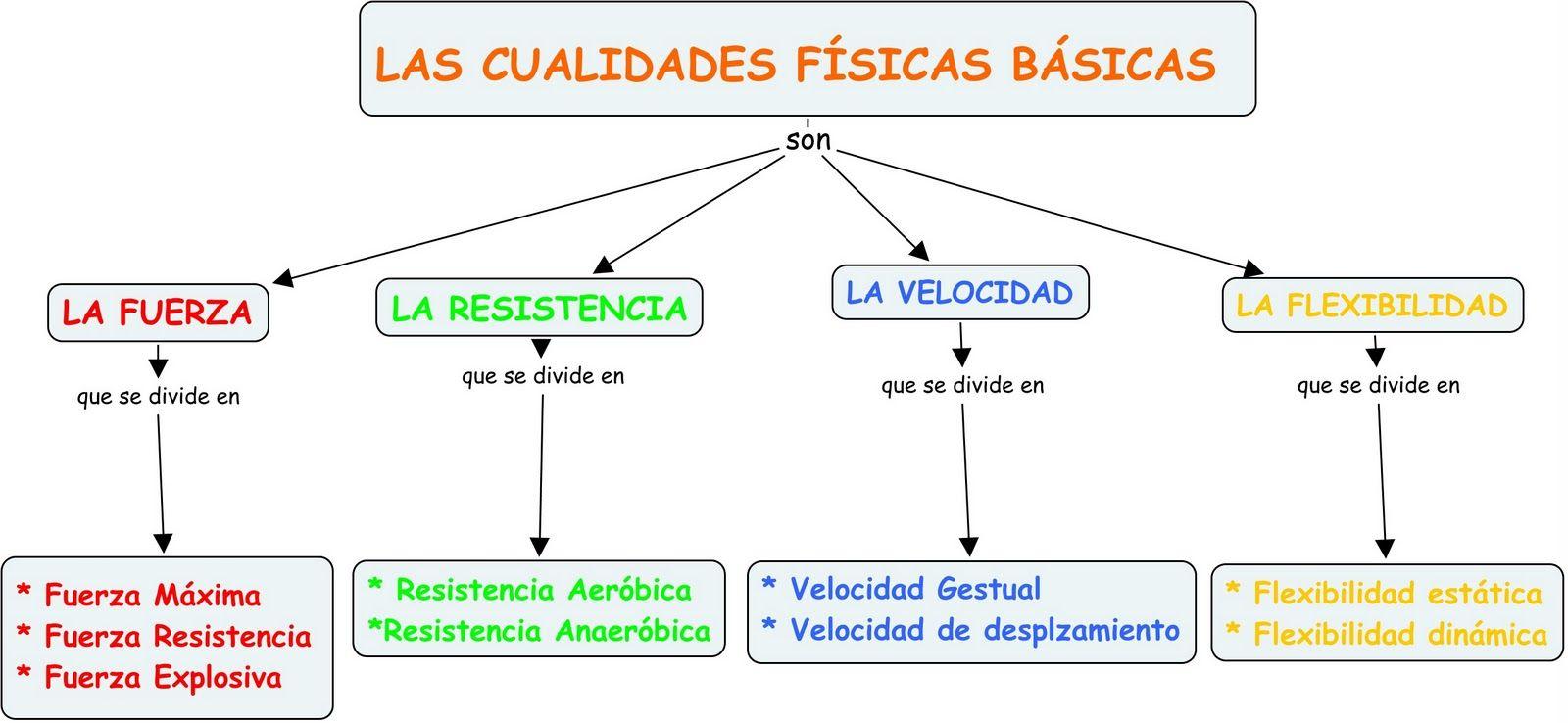 Capacidades Físicas Básicas Fuerza Resistencia Velocidad Flexibilidad Flashcards Chart Line Chart