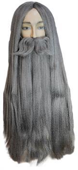 Wizard Wig Beard Set Costumepub Com In 2020 Sorceress Costume Halloween Costume Accessories Evil Queen Costume