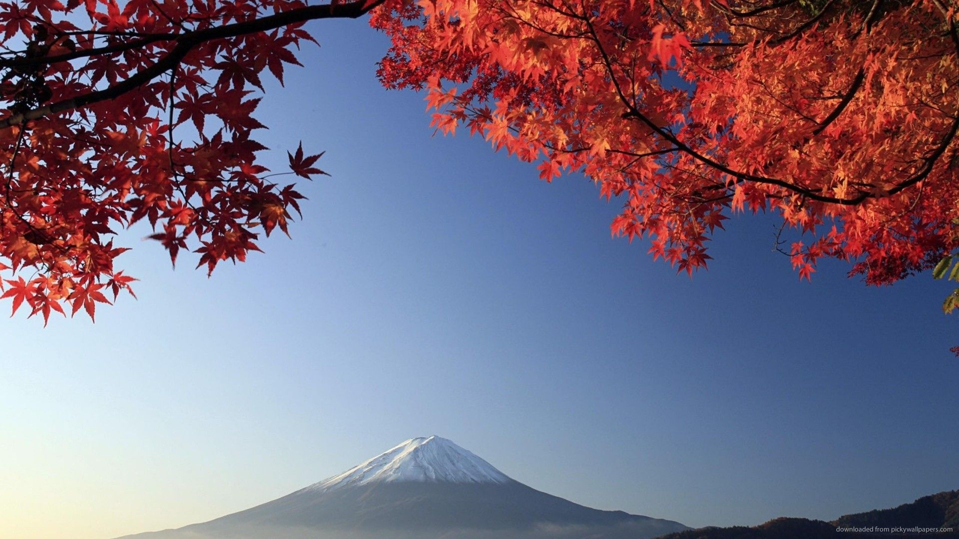 Japan Wallpaper 18 Jpg 1920 1080 Carta Da Parati Natura Tema Wordpress Wordpress