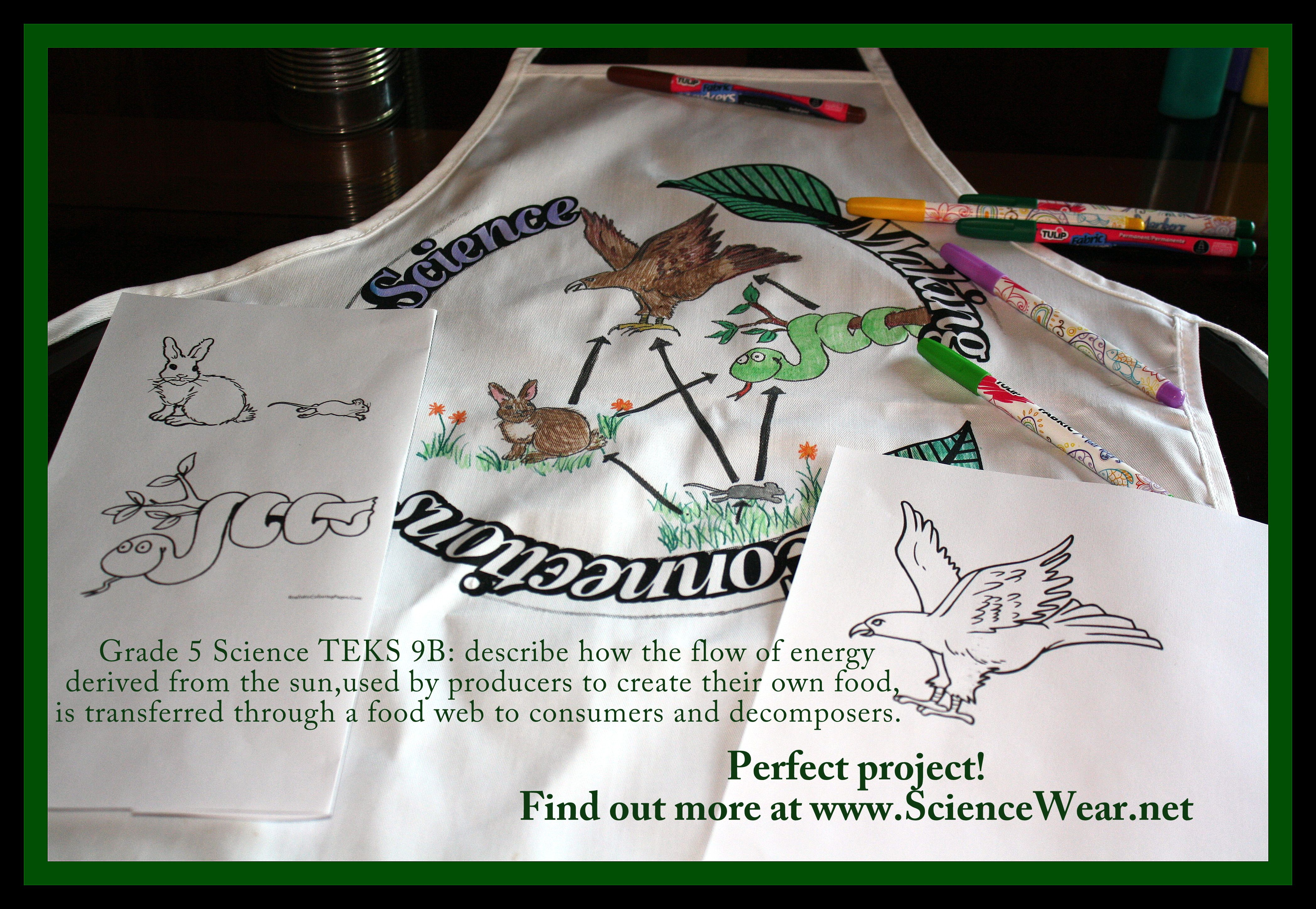 Pin By Science Wear On Food Chains Webs Ecosystems And
