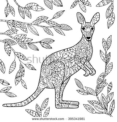 kangaroo animal coloring pages. Vector kangaroo illustration  Adult coloring page Coloring