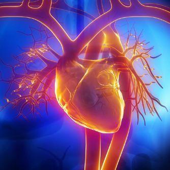Selenium & CoQ10 Combo Cuts Heart Disease Deaths in Half