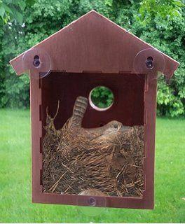 Amazon.com : See Through Bird House, Window Birdhouse   Easy Setup .