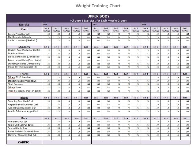 bodybuilding workout chart for men pdf