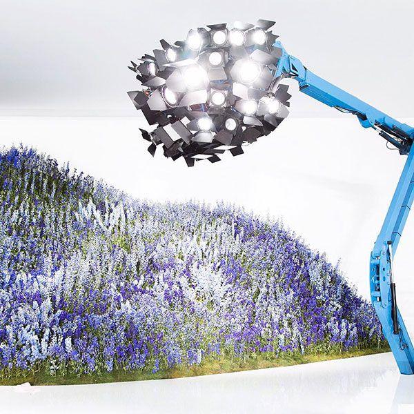 Dior Spring '16 flower dome
