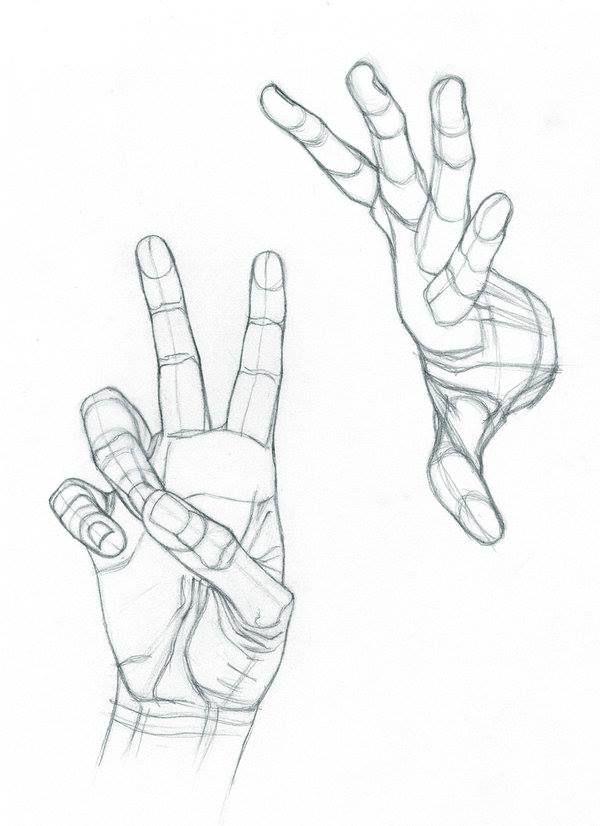 hands https://www.facebook.com/Bowh7/photos/?tab=album&album_id ...