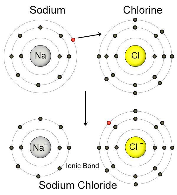 sodiumナトリウム+chlorine塩素=sodium chloride 塩化ナトリウム(塩 - new periodic table chloride symbol