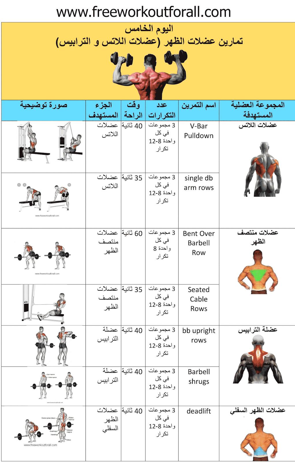جدول تمارين كمال الاجسام 5 ايام Workout Routine For Men Workout Schedule Gym Workout Tips