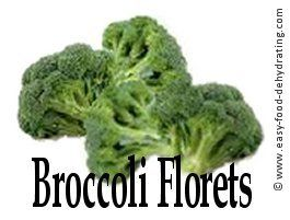 Broccoli florets, almost ready for dehydrating. Just slice them in half. More info. at www.easy-food-dehydrating.com