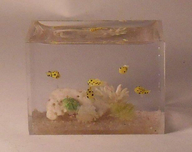 Aquarium #1 by Miyuki Kobayashi
