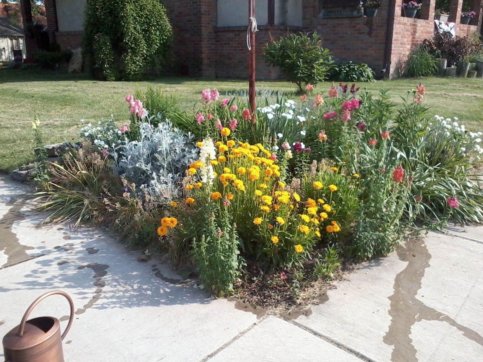 replace the stupid flower bed next to our driveway with