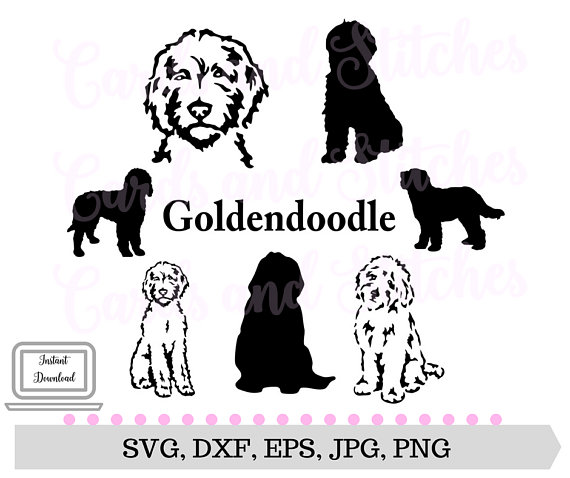 23261a1ad078e Goldendoodle SVG - Dog Silhouettes - Dogs SVG - Digital Cutting File ...