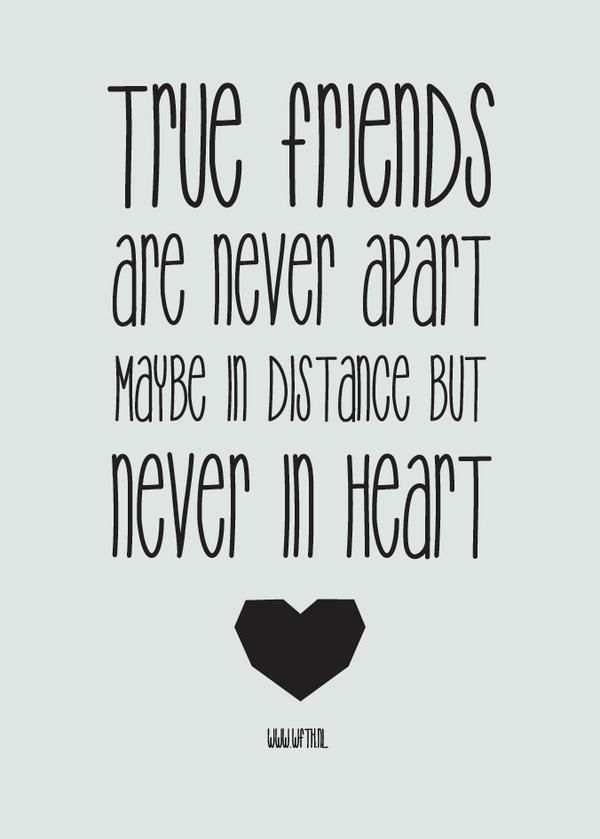 Quotes N Humor On Twitter Friends Quotes Cute Friendship Quotes Friendship Quotes