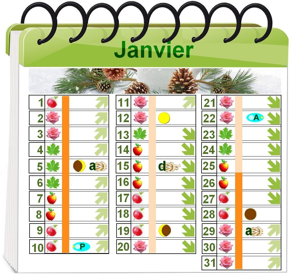 calendrier lunaire pour le jardinage biologique ann e 2017 jardin bio pinterest calendrier. Black Bedroom Furniture Sets. Home Design Ideas