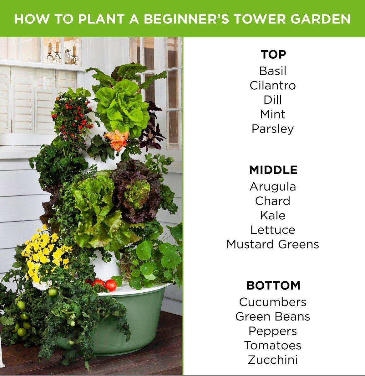 Thetowergarden Yourtowergarden Juice Plus Tower Garden Tower Garden Plants