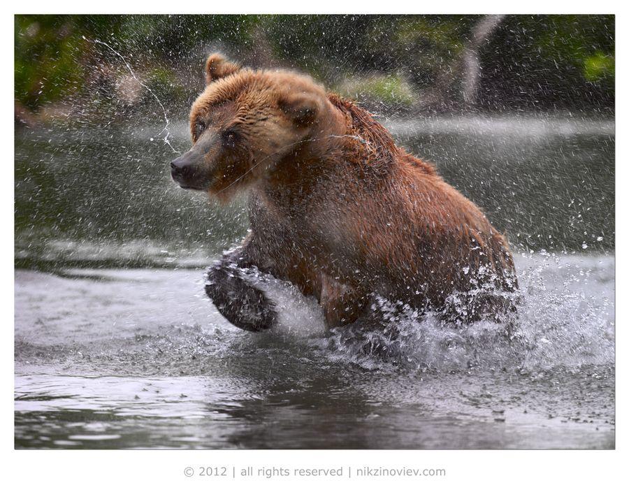 Splashing around :)
