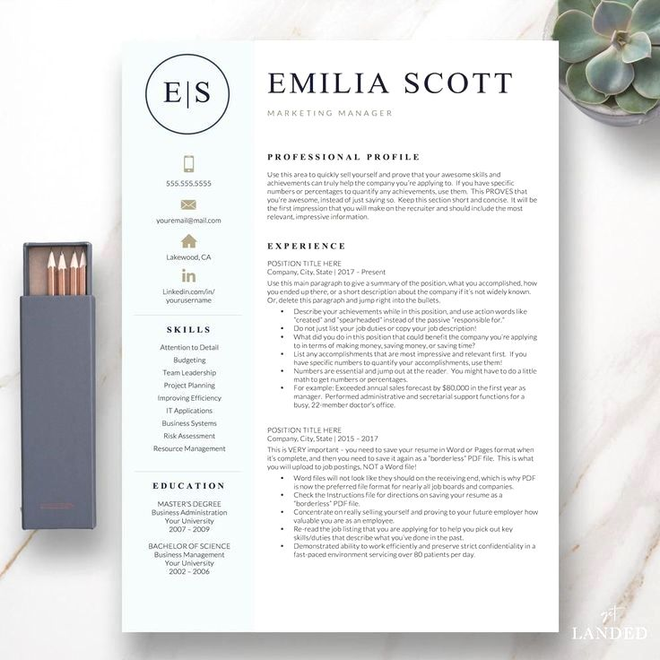 Creative, Stylish Resume Template for Word and Pages The
